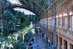 Estación de Atocha, La luz entra en la estación