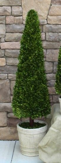 "Preserved Boxwood Topiary Cone - 43"" #homedecor"