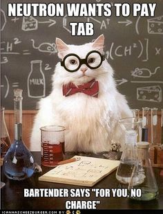 Funny Pictures - Chemistry Cat