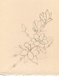 Magnolia Tree Tattoo | Pin Magnolia Tree Tattoo Meaning on Pinterest