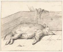 Pig drawn by Jean Bernard
