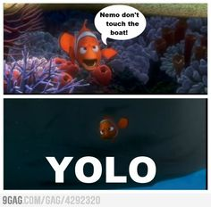 Nemo, you only live once