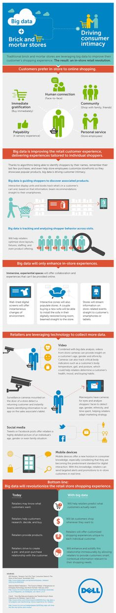 Big Data + Brick and Mortar Stores Infographic