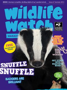 Wildlife Watch magazine for all family members of the Trust