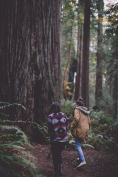 Hiking in the woods. Adventure Awaits, Adventure Travel, Nature Adventure, Forest Sounds, Lets Get Lost, Photo D Art, Foto Pose, Go Outside, The Great Outdoors