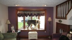 Clyde did not want me to take pictures of his bay window at this home in South Park