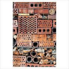 Afbeeldingsresultaat voor insect wall