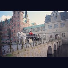 hulubelu #frederiksborg #slot / #castle #two #white #horses #carriage (#old ) #bridge #denmark #hillerød #photooftheday