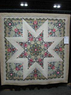 star medallion - I am fascinated with this quilt.  The applique actually makes the star in the center!  Stunning