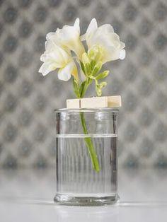 Eine einzelne Blüte in Szene gesetzt oder wozu Wäscheklammern sonst noch taugen
