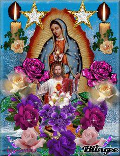 799841045 1465411 Imagenes De La Virgen De Guadalupe Con Rosas