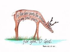 """As the deer pants for streams of water, so my soul pants for you, O God."" Psalm 42:1-3"