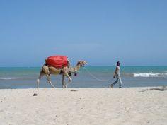 Tunisia - Djerba by Studio27 Progetto editoriale, via Flickr