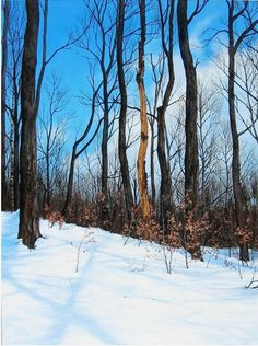 Winter trunks Oil on canvas 48x32 in