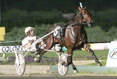 Rocknroll Hanover - 2005 Horse of the Year & Meadowlands Pace winner, Brian Sears in the sulky