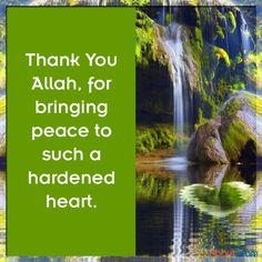 i never knew peace until i found Allah!