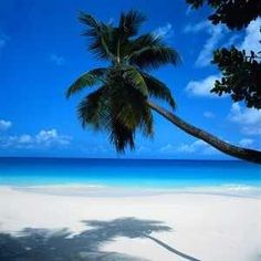 Cancun, my honeymoon
