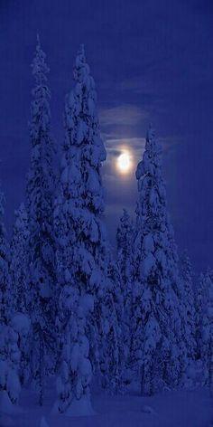 Darkness and Moon in Kuusamo, Finland. - by Paavo Hamunen