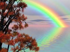 Darmo Ilustracja: Jesień, Upadek, Liście, Kolorów - Gratis obraz na Pixabay - 68062