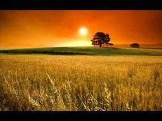 Salvador Bacarisse - Romanza (Andante) - YouTube