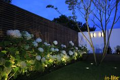 Levend groen | Border | Moderne Tuin | Buitenspot MINI SCOPE | Grondspot NERO | Wandlamp CURV | Tuinverlichting