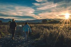 Fields of gold. . . . . .  #newzealand #nz #southisland #photography #Nikon #nikond3200 #d3200 #travel #travelphotography #explore #outdoors #optoutside #agameoftones #ig_landscape #igtravel #instatravel #travelgram #landscape #landscapephotography #photography #seetheworld #sunset #lifestyle #adventure http://tipsrazzi.com/ipost/1521593154330022693/?code=BUdyOmAgdMl