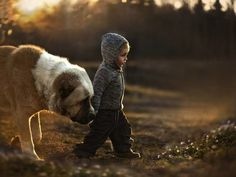 Mother's magical photos of her young sons with animals made my heart melt » DogHeirs | Where Dogs Are Family « Keywords: photographs, Russia, children, kids