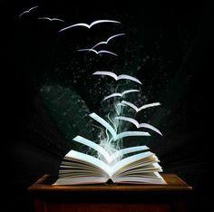 """""""Un libro abierto es un cerebro que habla; cerrado un amigo que espera; olvidado, un alma que perdona; destruido, un corazón que llora.""""  (Proverbio hindú)"""