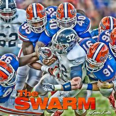 Fla Gators, Florida Gators Football, Gator Football, College Football Players, Tim Tebow, University Of Florida, Old Florida, World Of Sports, Bait