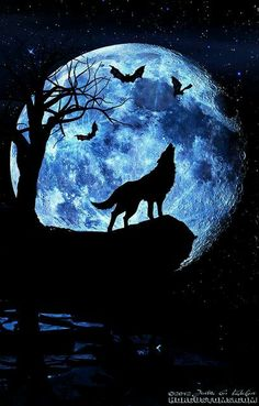 Wolf howling at the moon, composite art. – Mathilde Sakura Wolf howling at the moon, composite art. It's a wolf moon tomorrow night. What rituals are my witchey friends doing? Anime Wolf, Wolf Love, Beautiful Wolves, Beautiful Moon, Tier Wolf, Wolf Artwork, Wolf Painting, Mirror Painting, Blue Painting