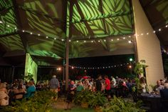 Treetops Terrace is one of the most popular locations at the Los