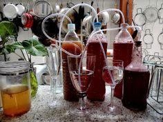 come-se: Kefir beer, country wine, espumante caseiro