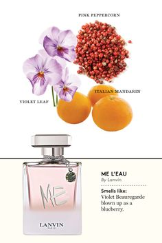 It is a base note that is used in perfumery because it adds a sophisticated, warm base note to fragrance blends. Our Amber blend also contains notes of vanilla, patchouli, musk and sandalwood. Flowerbomb Perfume, Perfume Scents, New Fragrances, Perfume Oils, Perfume Bottles, Lanvin Perfume, Hermes Perfume, Celebrity Perfume, Perfume Making