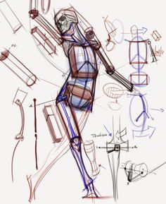 figuredrawing.info_news: Skeleton/Construction demos ★ Find more at http://www.pinterest.com/competing/