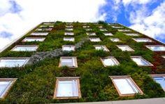 vertical garden on building