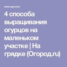 4 способа выращивания огурцов на маленьком участке   На грядке (Огород.ru)