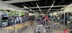 BIKERS by GRUPPO CARSAM - CANNONDALE-FOCUS