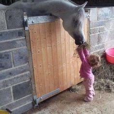 Они понимают друг друга!    Подарочные идеи на любой случай, по всякому поводу и без повода http://nadezdas.ru/blog/  #лошади, #надеждашеверова, #nadezdas.ru