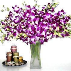 Fresh Flowers - 20 Purple Dendrobium Orchids with Vase Just Orchids,http://www.amazon.com/dp/B003KL1AKA/ref=cm_sw_r_pi_dp_ijJKsb08NYRQXN1R