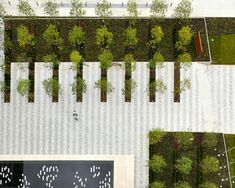 Landscape Architecture Jobs Scotland of Landscape Architect Salary In Japan all . - Landscape Architecture Jobs Scotland of Landscape Architect Salary In Japan all Landscape Architect - Landscape Architecture Jobs, School Architecture, Architecture Foundation, Architecture Design, Architecture Diagrams, Architecture Portfolio, Different Plants, Types Of Plants, Landscaping Tips