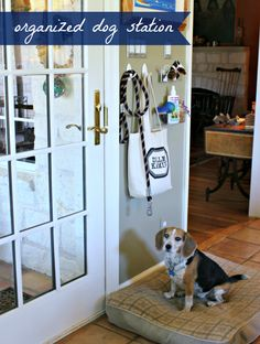 Need to put a little bit more organization into you and your families life? Well check out this new collection of Family Command Center DIY Projects! Small Dog Breeds, Small Dogs, Coat Closet Organization, Organization Ideas, Storage Ideas, Dog Storage, Family Command Center, Command Centers, Dog Station