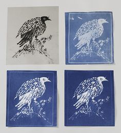 I miss doing cyanotypes - looking into getting into it again.