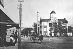 Carter County Courthouse and Downtown Elizabethton, TN in the early 1880's