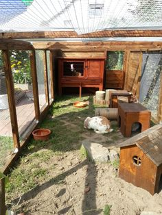 Wanted tips for outdoor enclosure! :) - Rabbit - Forum by sw . 🙂 – Kaninchen – Forum by sweetrabbits – made … Wanted tips for outdoor enclosure! :] – Rabbit – Forum by sweetrabbits – made with by worldweb - Outdoor Rabbit Run, Outdoor Rabbit Hutch, Indoor Rabbit, Bunny Cages, Rabbit Cages, Rabbit Habitat, Diy Guinea Pig Cage, Rabbit Enclosure, Diy Jardin