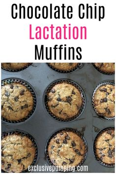 These chocolate chip lactation muffins are easy to make (one bowl!), delicious, and can help you boost your milk supply! They have three galactagogues including oats, brewer's yeast, and flaxseed. Click to make it or pin for later! #breastfeeding #milksupply #lactationmuffins