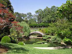 Spring has sprung at the Huntington Library Gardens. Huntington Library, Public Garden, Spring Has Sprung, Get Outside, Garden Bridge, Outdoor Activities, Botanical Gardens, Around The Worlds, California