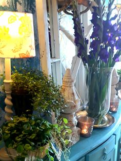 Plants, Home, Ad Home, Plant, Homes, Haus, Planets, Houses