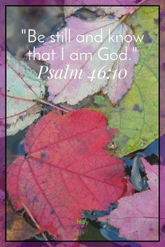 How to find peace during tough times. Be Still and Know that I am God|The Holy Mess