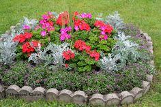 Adding Vertical Interest In A Small Garden
