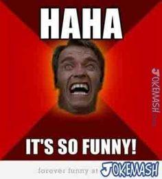 Ha Ha it's So Funny!